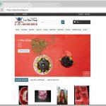 bijutricotaje_site